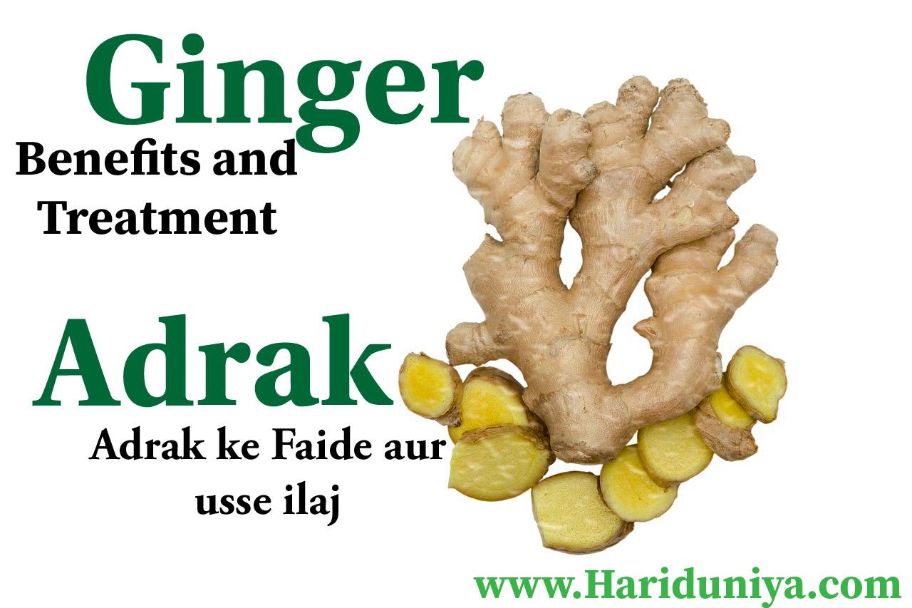 Ginger Benefits | Adrak ke faide aur usse ilaj | - HARI DUNIYA