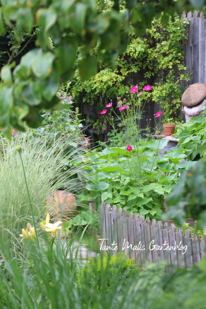 Gemüsegarten mit Holzzaun Cottage Garden Bauerngarten