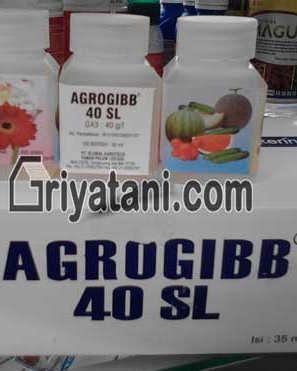 AGROGIBB 40 SL