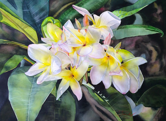 Watercolor Artists International: Original Fine Art painting, plumeria flowers, by Colleen Sanchez, Hawaii
