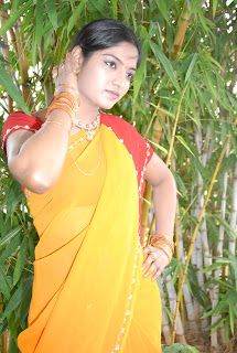 Keerthi Saree Pictures (14)