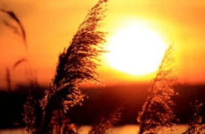 Kumpulan Puisi Cinta Di Ujung Senja Romantis Menyentuh Hati Dan Mengagumkan