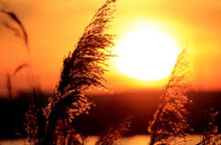 Kumpulan Puisi Cinta Di Ujung Senja Romantis Menyentuh Hati & Mengagumkan