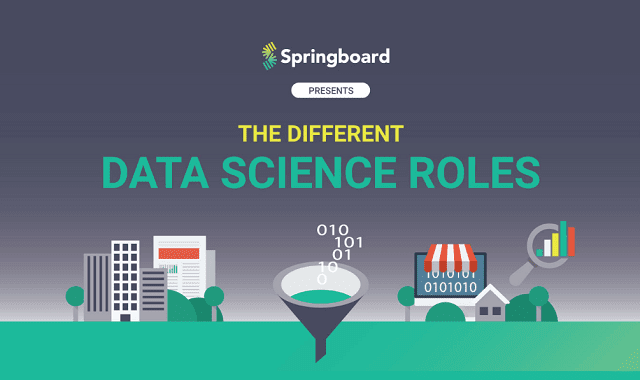 The Different Data Science Roles