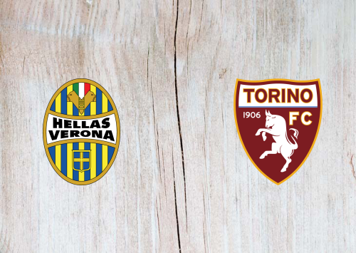 Hellas Verona vs Torino -Highlights 15 December 2019
