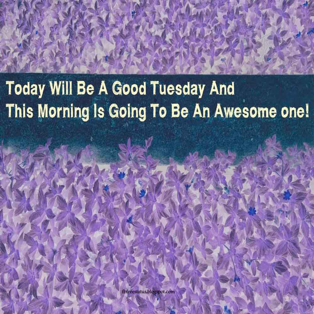 Today will be a good tuesday and this morning is going to be an awesome one.