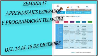 APRENDIZAJES ESPERADOS Y PROGRAMACIÓN TELEVISIVA-SEMANA 17 - DEL 14 AL 18 DE DICIEMBRE