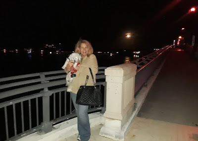 There is so much dog friendly walking in West Palm Beach and Palm Beach. The walk across the beautiful Flagler Memorial Bridge is stunning, day or night.