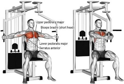 Pec Deck and Seated Chest Press