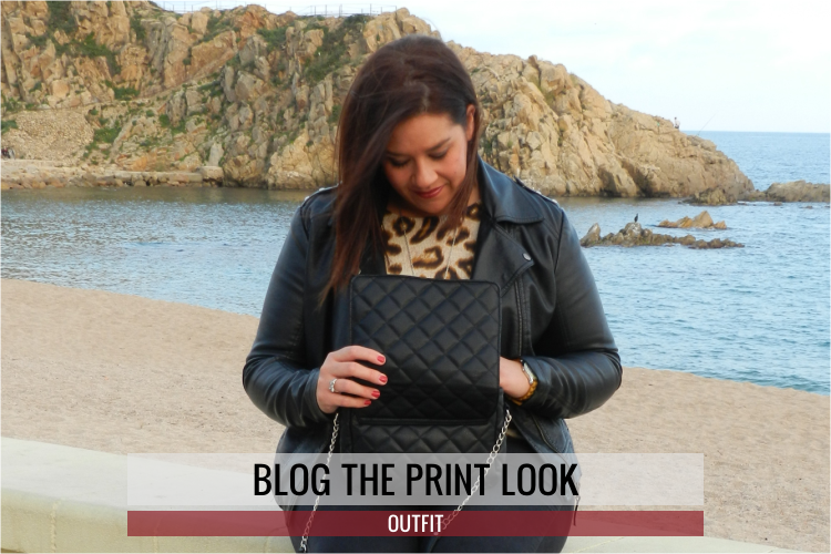 Blog The Print Look