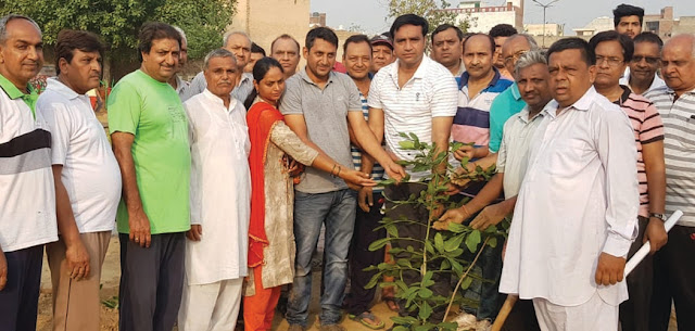 Deepak Chaudhary, not limited to planting, but also to take care of them: