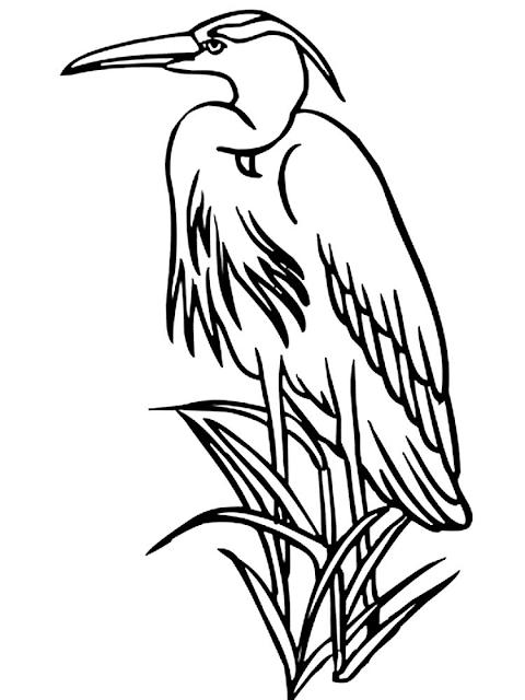 Mewarnai Gambar Burung Bangau - 8