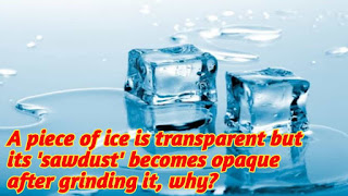 A piece of ice is transparent but its 'sawdust' becomes opaque after grinding it, why?