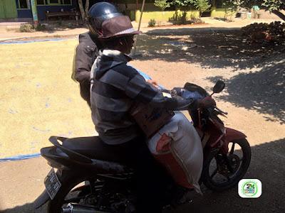 Benih pesanan RUSLAN Subang, Jabar..   (Setelah Packing dan mau dibawa pulang)