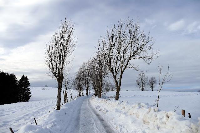 escursioni passeggiate invernali asiago