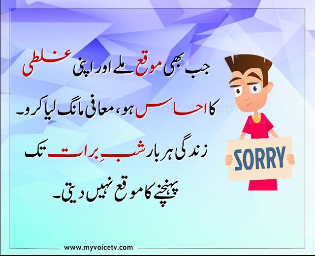 👍  #Urduquotes #Islamicquotes #Quoteoftheday  -Jab bhi moqa milay aur apni ghalti ....