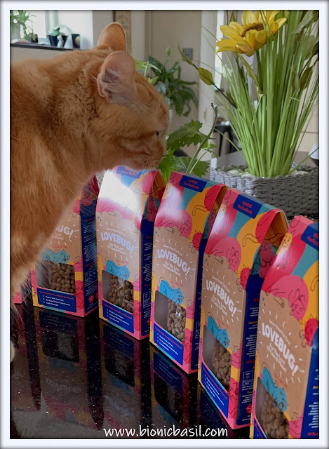What's In The Box ©BionicBasil® Lovebug Insect-Based Cat Food