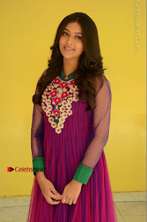 Actress Pooja Jhaveri Latest Stills in Purple Salwar Kameezt at Dwaraka Success Meet  0104.JPG