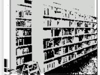 Pengorganisasian Perpustakaan