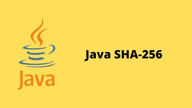 HackerRank Java SHA-256 problem solution