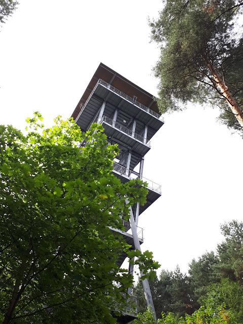 Lausitzer seenland aka Lusatian Lakeland View tower Senftenberger Lake