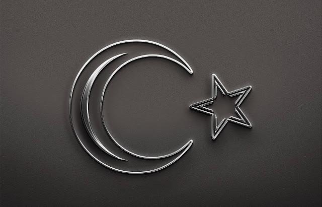 Metalik Gümüş Türk bayrağı Tasarımı krom efekti 3D
