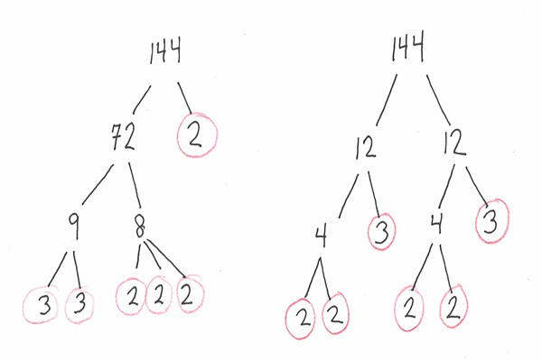 Factors of a Number