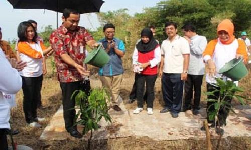Manfaat Nyata Gerakan Menanam Pohon pepaya