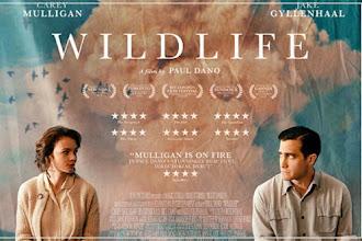 Yangın Yeri | Wildlife