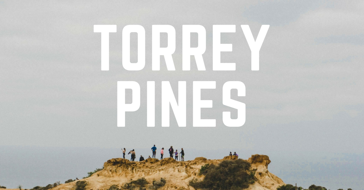 torrey-pines-hiking-trail