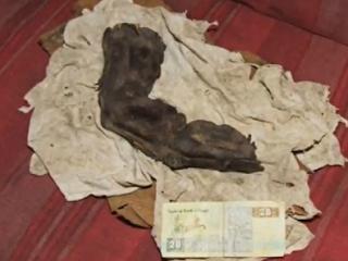 Οι γίγαντες της Αιγύπτου – Ανήκε κάποτε το δάχτυλο αυτό σε ένα «μυθικό» γίγαντα