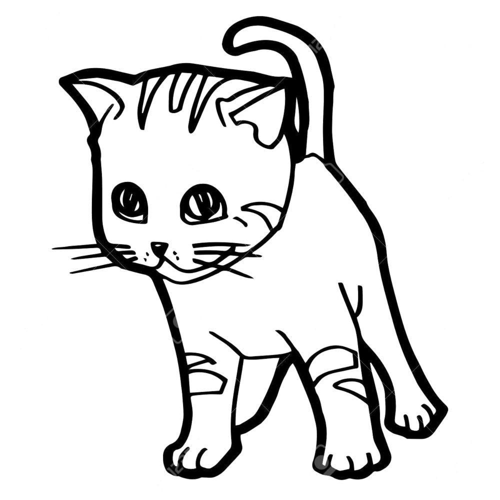Download Gambar Mewarnai Kucing