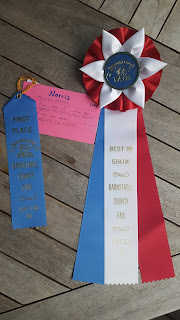 blue ribbon and best in show ribbon