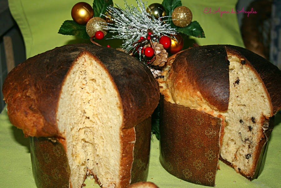 panettone, italia, navidad, pan dulce