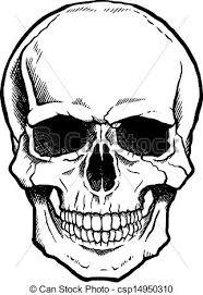मानव शरीर की रचना 6