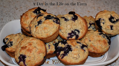 Healthy-ish Blueberry Muffins