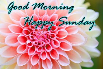 good morning sunday greetings wishes images