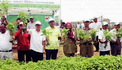 East West Seed Indonesia