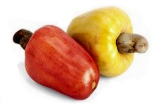 Fruta del Merey Fruta Venezolana