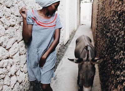 Keledai di Kota lamu dari The Discoverer