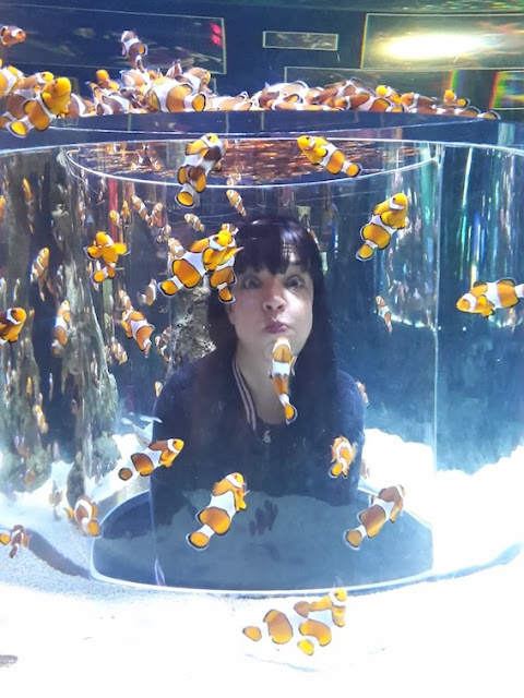 Girl holding breath in clownfish tank at the Two Oceans Aquarium, Cape Town