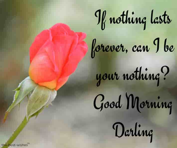good morning darling wishes