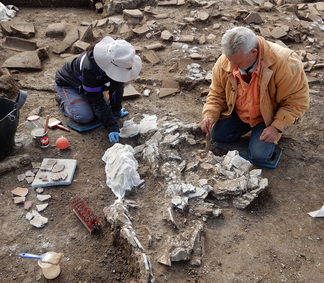 New finds in Aegae, the royal metropolis of the Macedonians