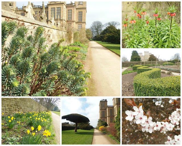 Some views of the gardens in March