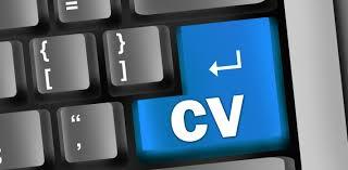 Cómo hacer un curriculum de un trabajador freelance