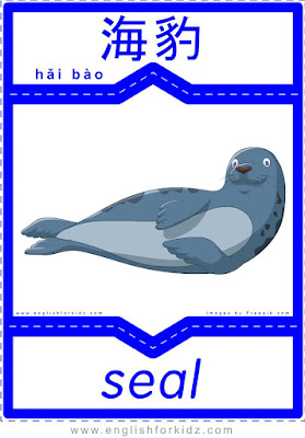Seal - English-Chinese flashcards to learn names of north and polar animals