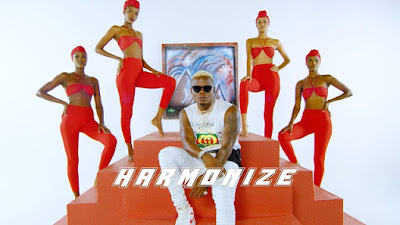 DOWNLOAD VIDEO | Harmonize - Hainishtui (Official Video) Mp4
