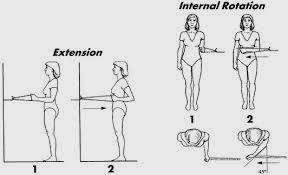 Pain & Rehabilitation: Physiotherapy Treatment of Rotator