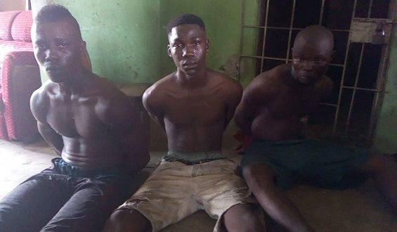 Photo: Three boys nabbed while attempting to rob a house in Delta State