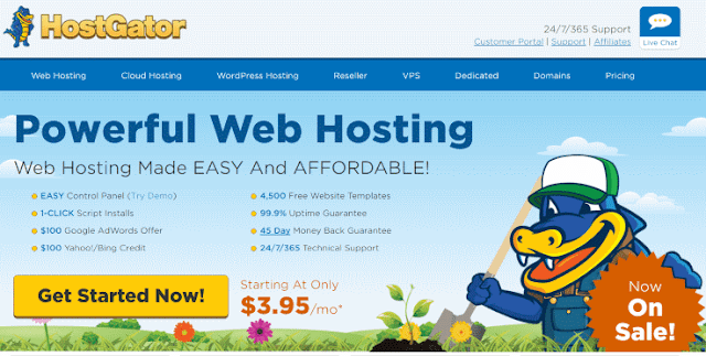 Top 10 Web Hosting Companies in India